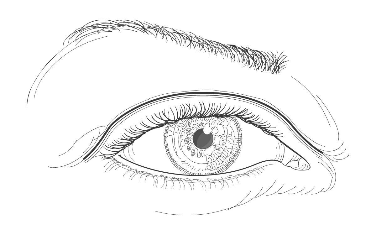 El ojo y las razas humanas - Blog de Ojos - Innova Ocular Clínica Dr ...