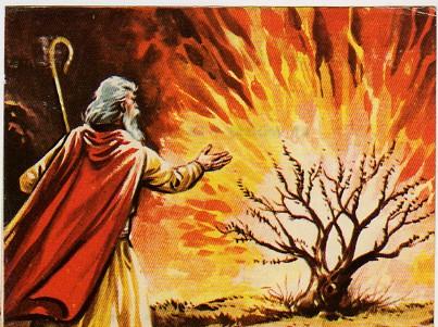 Moises y la zarza
