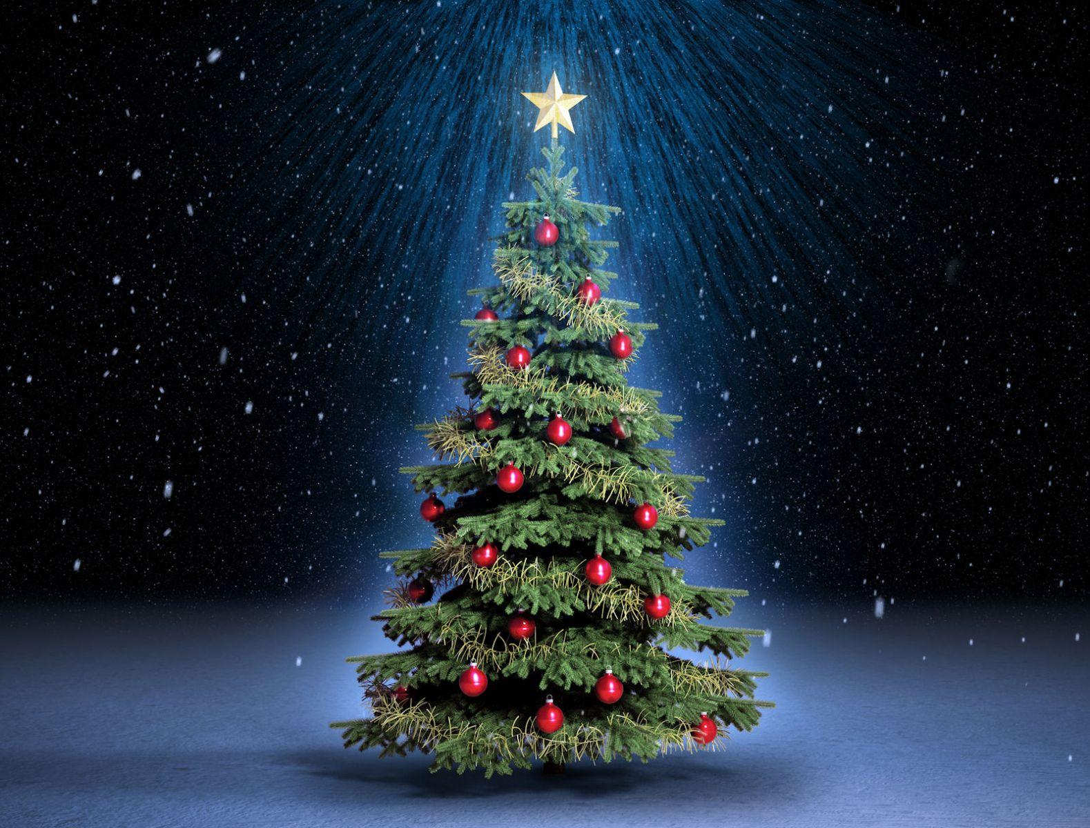 el origen del rbol de navidad - Arbol De Navidad